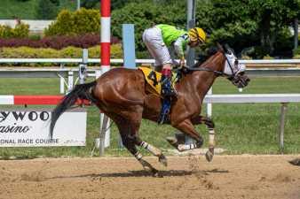 the #4 horse and jockey at Hollywood Casino