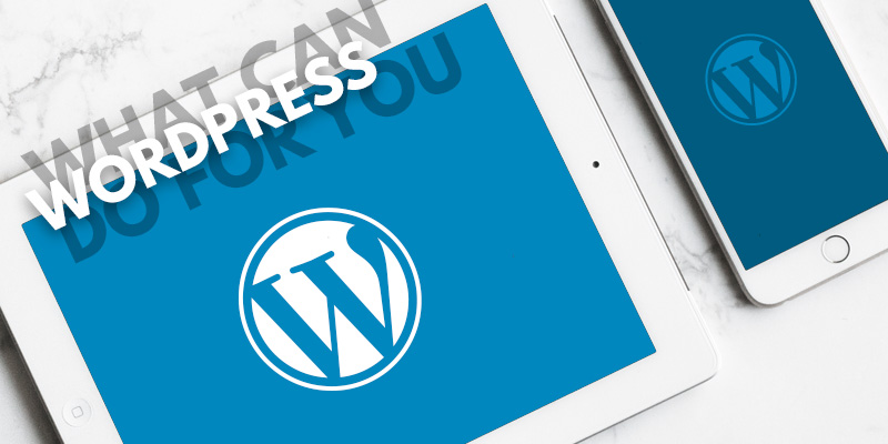 What Can WordPress Do For You?